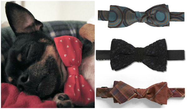 national-bow-tie-day-dog