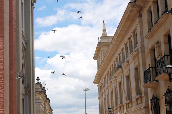 Bogota-Candelaria-Downtown-Street-Birds