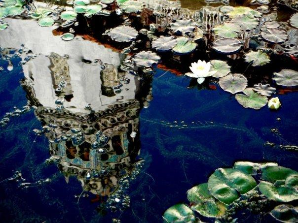 Hearst-Castle-Gardens-6