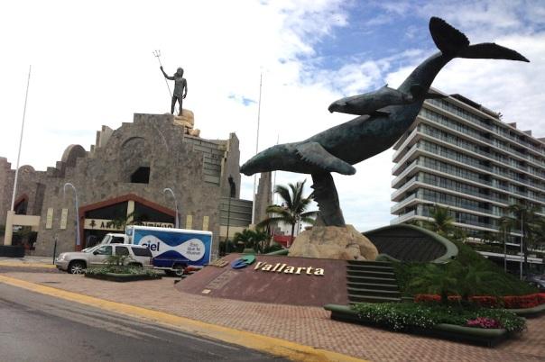 puerto-vallarta-whale