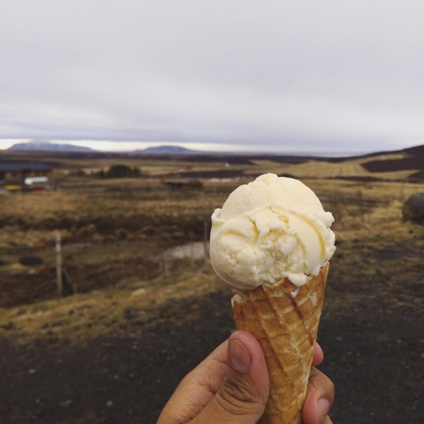 iceland-ice-cream-dairy-farm