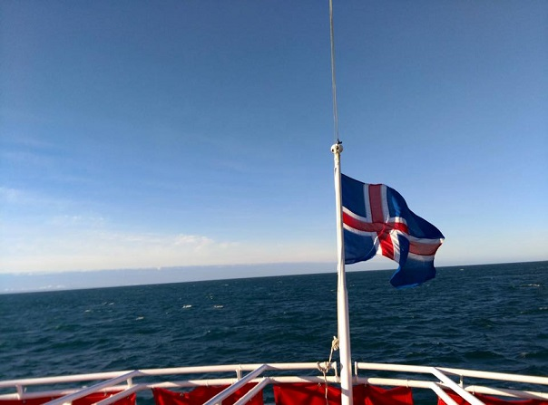 iceland-sailing-whale-watching